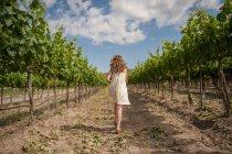 Mädchen zu Fuß im Weinberg — Stockfoto