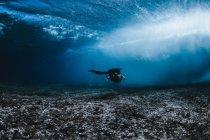 Weibchen Schwimmen unter Wellen — Stockfoto