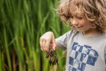 Мальчик держит краба — стоковое фото