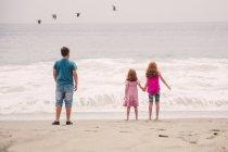 Дети, наблюдая волн, разбивающихся на пляже — стоковое фото
