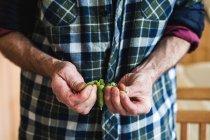 Senior-Mann schält frische Erbsen — Stockfoto
