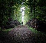 Mulher andando na floresta — Fotografia de Stock