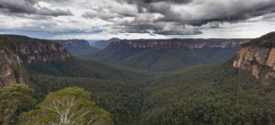 Beautiful view of Blue Mountains — Stock Photo