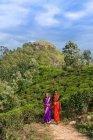 Женщины прогуливаясь по чайной плантации — стоковое фото