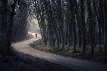 Людина прогулянки з собакою — стокове фото