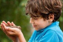 Мальчик держит в руках раненую птицу — стоковое фото