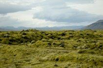 Paisagem árida, Islândia — Fotografia de Stock