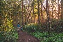 Padre che cammina con il figlio nei boschi — Foto stock