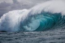 Трубная волна, Гавайи — стоковое фото