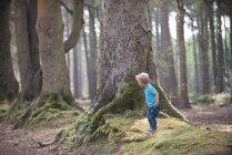 Ragazzo che gioca nella foresta — Foto stock