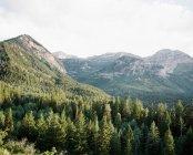 Vue d'observation du mont Timpanogos — Photo de stock