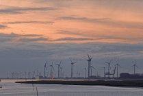 Windräder in Reihe im Hafen — Stockfoto