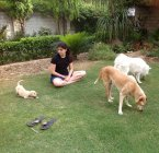 Woman playing with dogs — Stock Photo