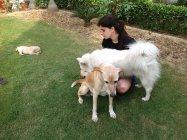 Femme jouant avec des chiens — Photo de stock