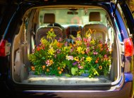 Beautiful colorful flowers in open car trunk — Stock Photo
