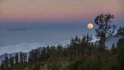 Мальовничий вид на місяць над лісі, Схід Java, Індонезії — стокове фото