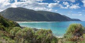 Vue panoramique de la côte, Victoria, Australie — Photo de stock