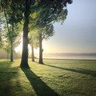 Paisagem de Kralingse Bos de manhã, Roterdão, Holanda — Fotografia de Stock