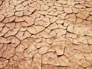 Terres fissurées, Terres asséchées dans la sécheresse — Photo de stock
