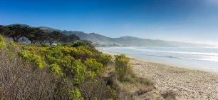 Мальовничий вид на порожні пляжі, Аполлон-Бей, Вікторія, Австралія — стокове фото