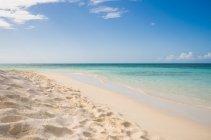 Живописный вид на тропический пляж, Карибского островка, Антигуа, Колючая груша. — стоковое фото