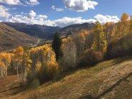 Floresta e montanhas paisagem, Vail, Colorado, América, Estados Unidos da América — Fotografia de Stock