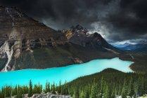 Живописный вид на красивое озеро Пейто под драматическим небом, Банфф, Альберта, Канада — стоковое фото