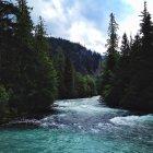 Exuberante río en día soleado, Canadá, British Columbia - foto de stock