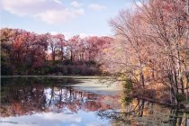 Scenic view of colorful autumn at USA, Illinois, LaSalle County, Starved Rock — Stock Photo