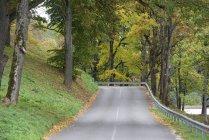 Scenic view of autumn road, Dubingiai, Lithuania — Stock Photo