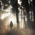 Quadro místico de figura encapuzada em madeiras — Fotografia de Stock