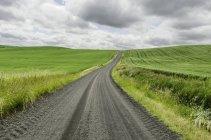 Vue panoramique de la route rurale parmi l'herbe verte — Photo de stock