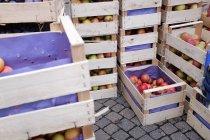 Kisten mit frischen Äpfeln gestapelt auf dem Markt — Stockfoto