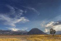 Malerischer Blick auf den Mount Bromo Nationalpark, Ostjava, Indonesien — Stockfoto