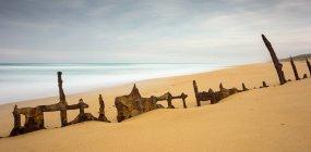 Scenic view of Shipwreck at Golden Beach, Victoria, Australia — Stock Photo