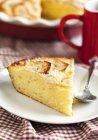 Fetta di torta di Ricotta con mele sulla zolla — Foto stock