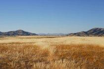 Живописный вид идиллический пейзаж, Америка, США — стоковое фото