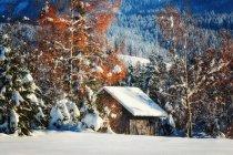 Vista panoramica della capanna invernale innevata in Svizzera — Foto stock