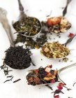 Типы различные чай, черный, зеленый, цветочный и травяной на белом — стоковое фото