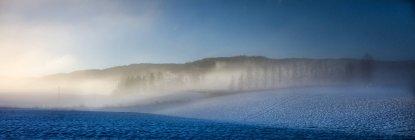 Noruega, Nittedal, majestuoso paisaje invernal - foto de stock