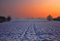 Beautiful winter landscape at sunset, Aargau, Switzerland — Stock Photo