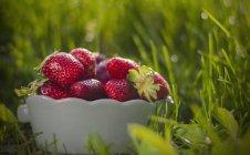Cuenco de sabrosas fresas en la hierba verde - foto de stock