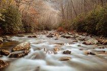 Vue panoramique sur le ruisseau de montagne, Caroline du Nord, États-Unis — Photo de stock