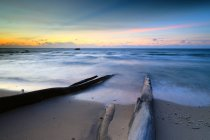Scenic view of driftwood on beach at sunset, Sabah, Borneo, Malaysia — Stock Photo