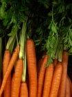 Mazzo di carote fresche organiche con gambi — Foto stock