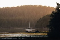 Malerischer Blick auf Boot, das hinaus aufs Meer segelt, Vancouver, britische Kolumbia, Kanada — Stockfoto