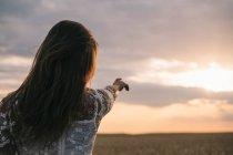 Заднього виду жінці, стоячи в пшеничному полі і вказуючи на захід сонця — стокове фото