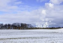 Dampf aus Kernkraftwerk gesehen über Feld, Illinois, America, Usa — Stockfoto