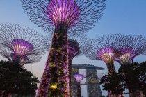Jardins de la baie de Singapour la nuit, — Photo de stock