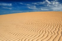 Desert landscape with blue sky, Fuerteventura, Canary Islands, Spain — Stock Photo
